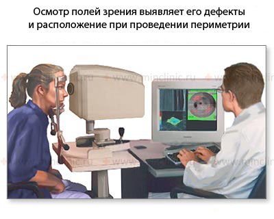 Anatomy and physiology of the human eye, eyeball and retina, types of vision, shaped vision and visual acuity, colour vision, light perception and study of the visual fields, perimetry, diagnosis and treatment in Moscow, symptoms