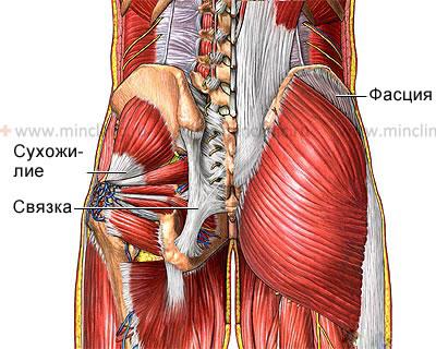 Подтягивание при шейном остеохондрозе